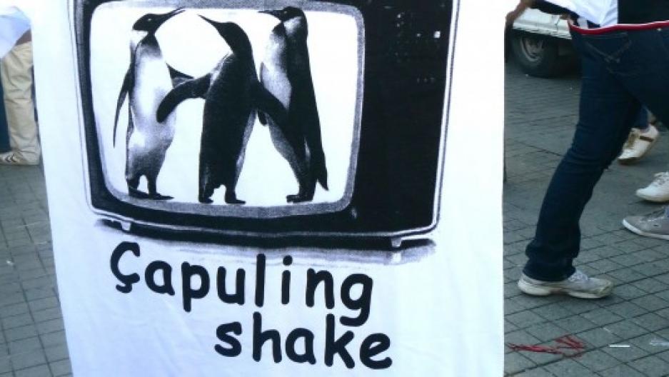 Gezi Park's Linguistic Legacy: Words, Chants and Song Lyrics