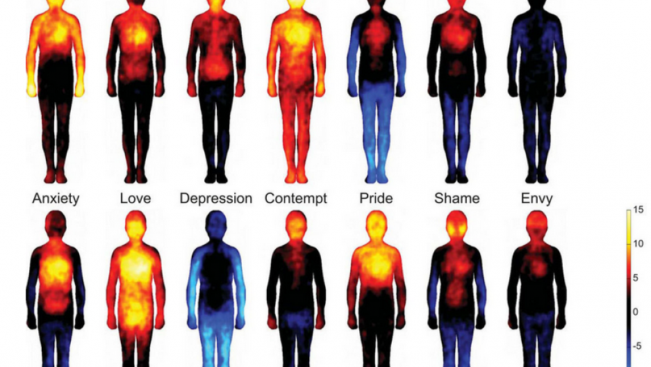New Study Suggests People Feel Sensations In Different Parts Of
