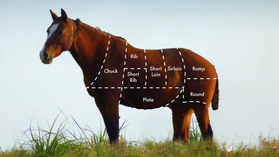 How to cook your horse | Public Radio International