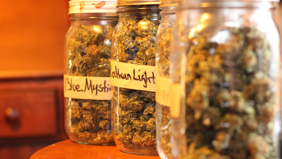 medical marijuana scourge or savior Medical marijuana: scourge or savior may 15, 2012 medical marijuana: scourge or savior in the united states and many other countries around the world marijuana (the.