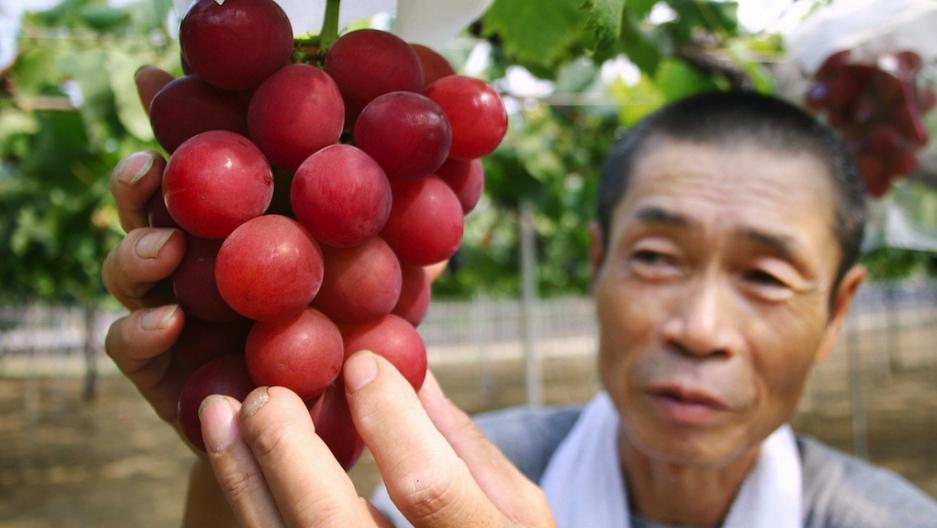 Фетиш с фруктами фото 720-521