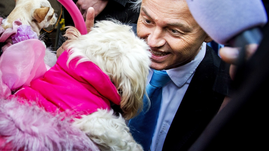 In this 2014 photo, leader of the Party for Freedom (PVV) Geert Wilders greets a little dog at a market in The Hague during campaigning.