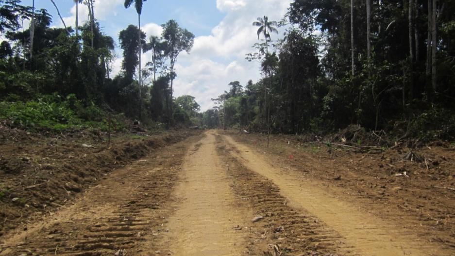 Road through Peru's Amazon