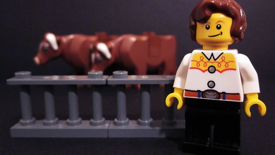Temple Grandin LEGO