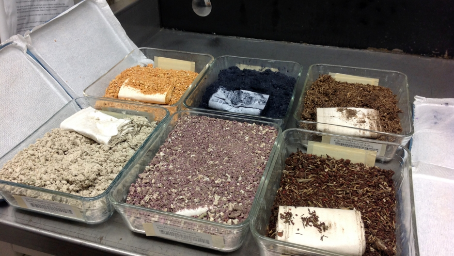 Pyrex dishes in a National Cancer Institute lab hold an assortment of dry powders derived from a different types of marine organisms. The powders will be processed and exposed to tumor cell lines. If researchers spot any promising anti-cancer activity, th