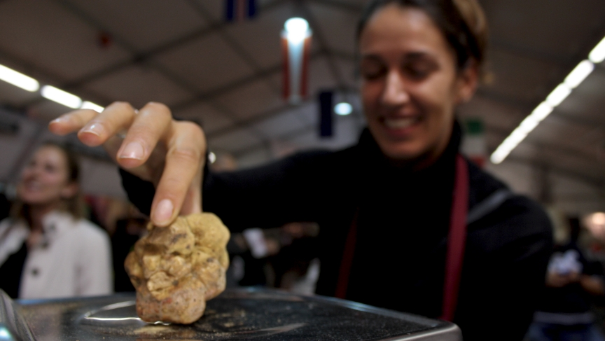 A seller weighs a white truffle.  In the local market, a piece like this one can go for $450.