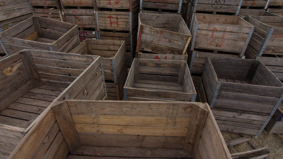 Apple crates at Vicente Robles' apple packinghouse in Bachíniva, Chihuahua.