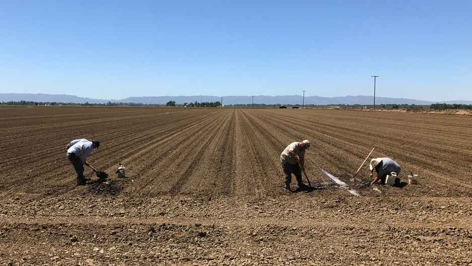 Farm workers repair irrigation pipes during spring planting