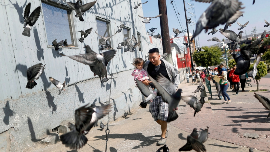 Dozens of pigeons surround a man holding a small girl in his arms.