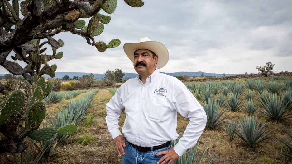 Tequila grower Adolfo Murillo at his agave fields near the village of Agua Negra in Jalisco, Mexico.
