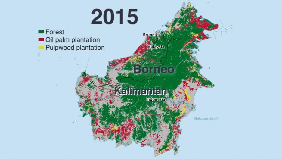 Borneo map