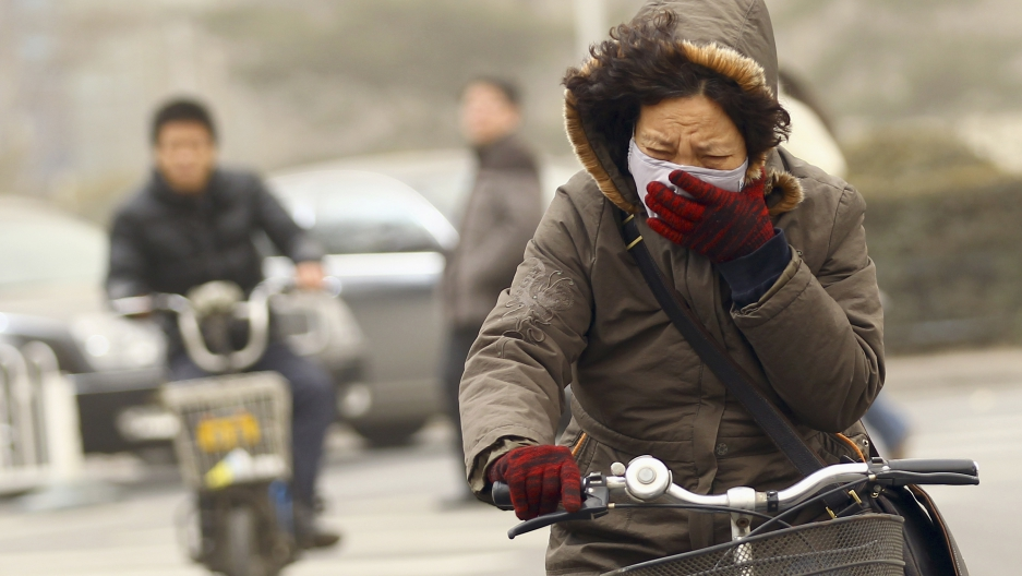 A woman wearing a mask rides her bicycle along a street on a hazy morning in Beijing, February 28, 2013. Beijing's environmental authorities said that day air quality in Beijing and nearby regions hit dangerous levels, Xinhua News Agency reported.