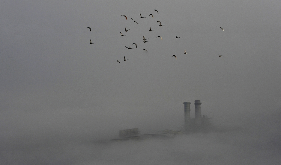 Birds fly across the sky on a polluted day in Wuhan, Hubei province, on February 16, 2015.