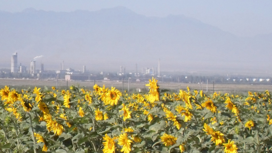 China power plant in Xinjiang