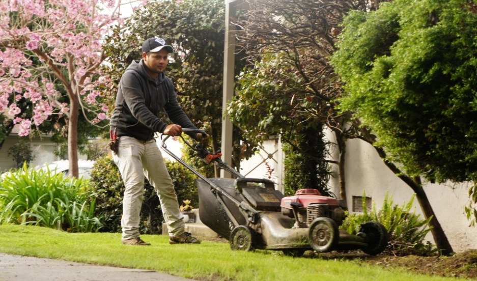Business-minded immigrants often turn to gardening work because the start-up costs are relatively modest — namely the price of the truck and the gardening equipment.
