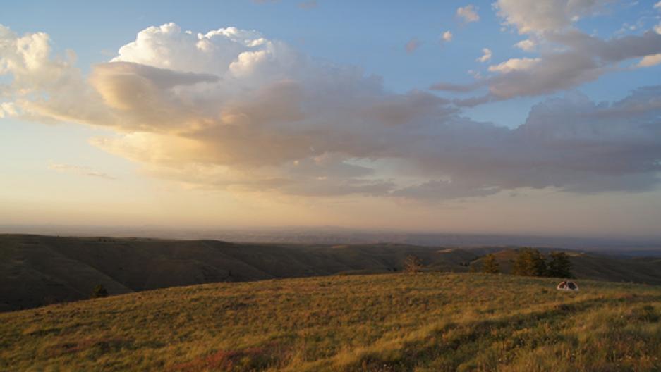 Canyon grassland