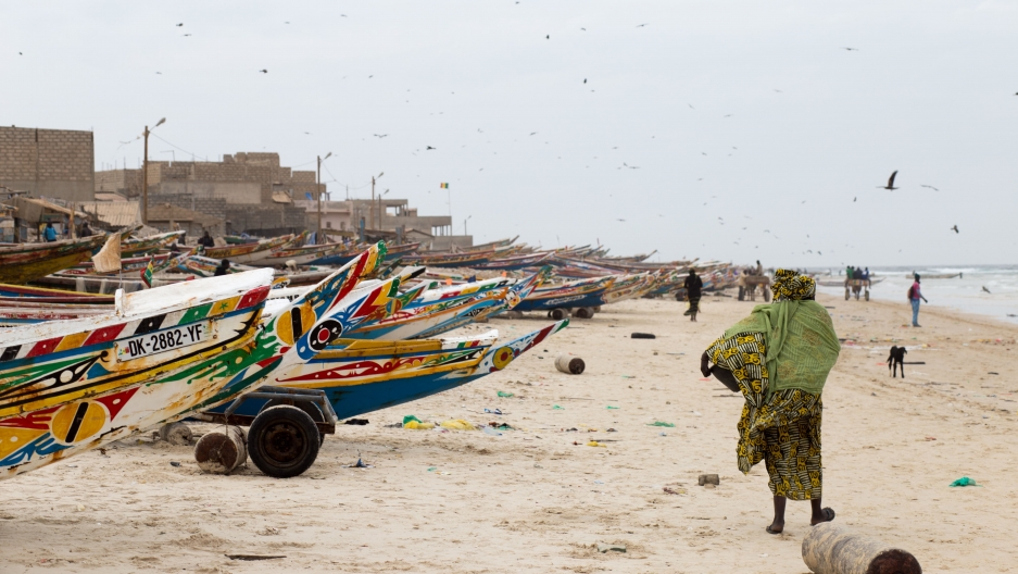 Senegalese women turn to exporting fish in spite of local