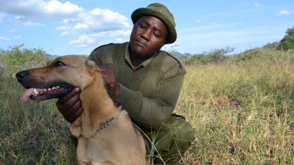 Poacher turned ranger Mutinda Ndivo