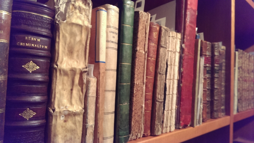 A bookshelf at the Conjuring Arts Research Center in NYC