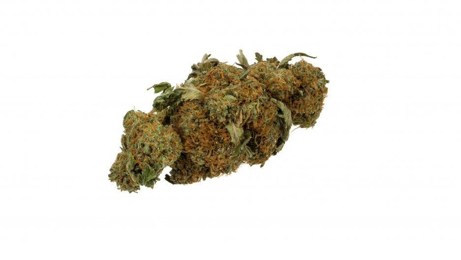 Dried cannabis bud
