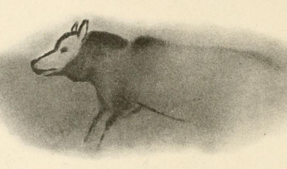 An image of a 17,000-year-old cave painting of a wolf-like dog in Font-de-Gaume, France.