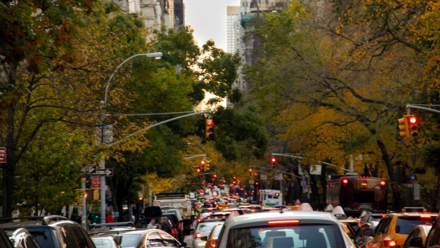 Trees line a busy street in New York. The city is trying to plant 1,000,000 trees to offset climate effects.
