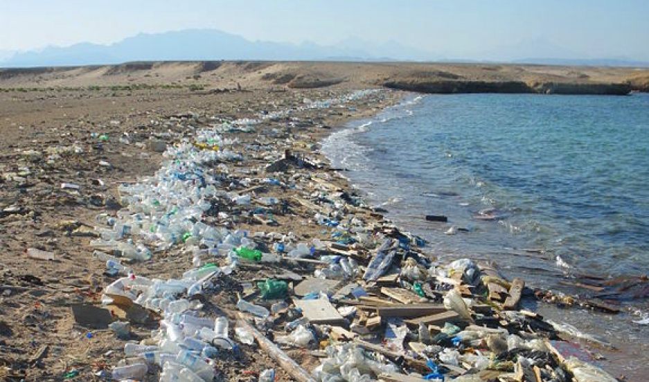 This Photo Often Acpanies Stories About The Garbage Patches But It Was Actually Taken At Manila Harbor Real Pieces Of Oceanic Plastic Are