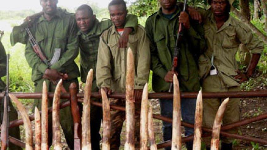 Anti poaching rangers in Tanzania