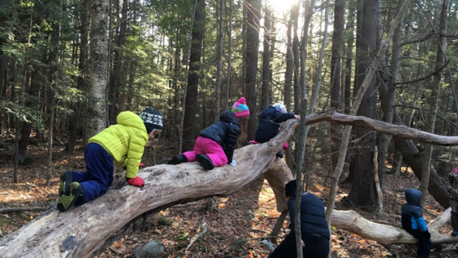 How To Protect Kids From Nature Deficit >> Nature Based Preschools Where Children Spend Most Of Their