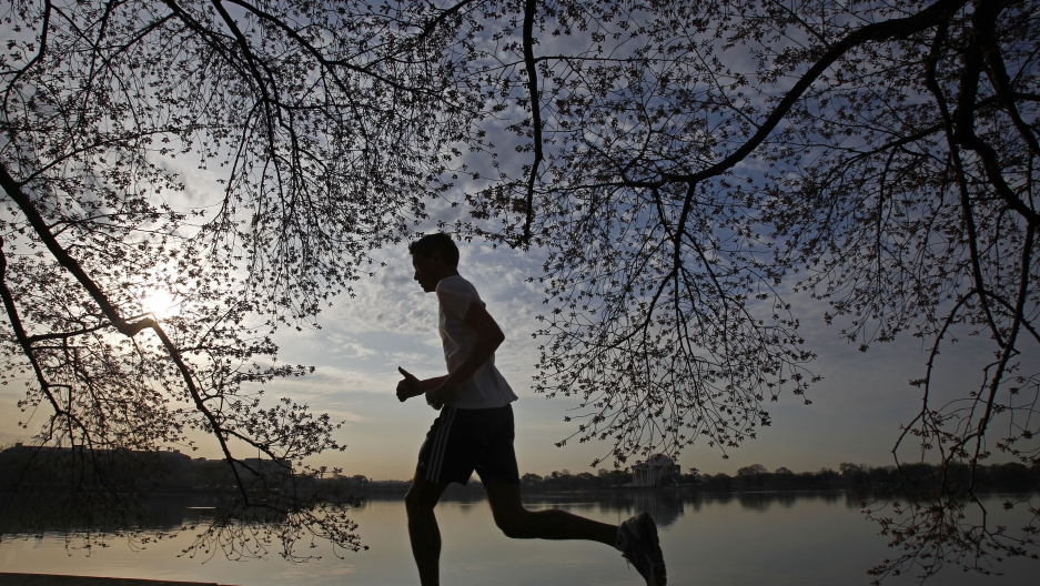 Man running under cherry blossom branches