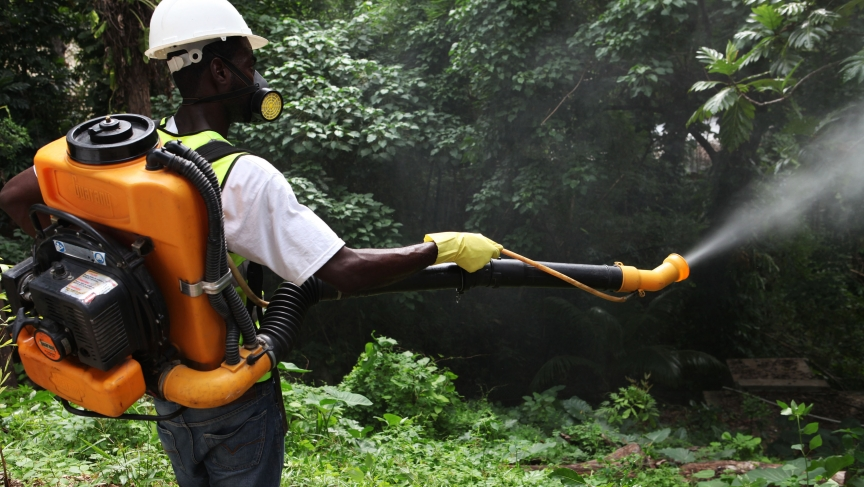 A worker from a private company fumigates a property for mosquitoes in Port-au-Prince, May 23, 2014. The painful mosquito-borne virus called Chikungunya is spreading quickly through the Caribbean, causing alarm in Haiti and the neighboring Dominican Repub