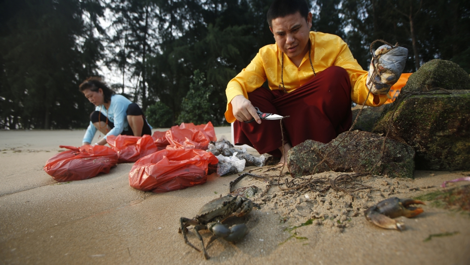 Tibetan Buddhists believe that during lunar and solar eclipses, the effects of one's good or bad deeds are multiplied several-fold. Here, a Tibetan Buddhist monk releases crabs into the sea ahead of a total lunar eclipse in Singapore on October 8, 2014. O