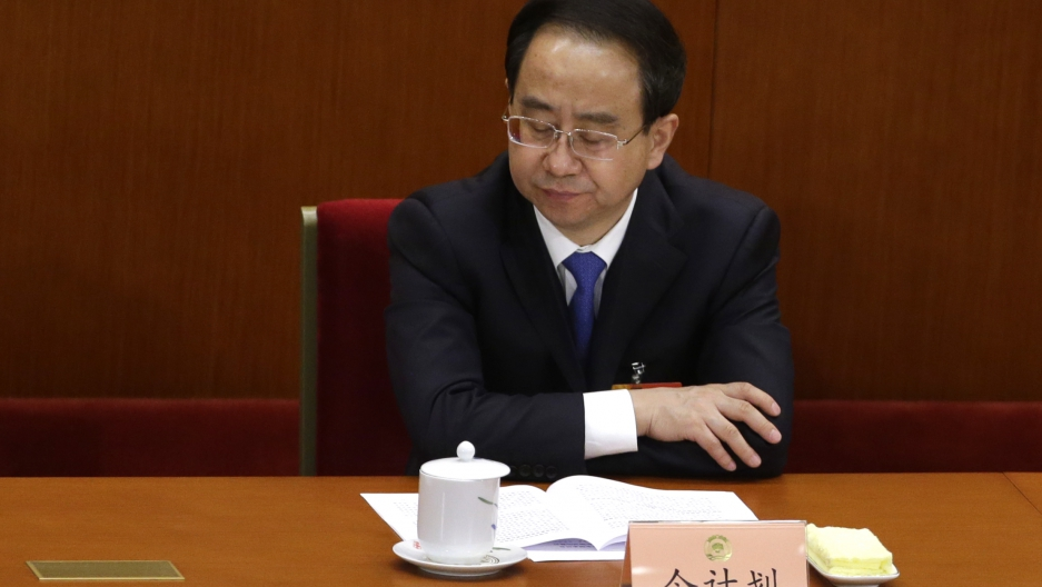 Ling Jihua, newly elected vice chairman of the Chinese People's Political Consultative Conference (CPPCC), pauses while attending the opening ceremony of the CPPCC at the Great Hall of the People in Beijing March 3, 2013.