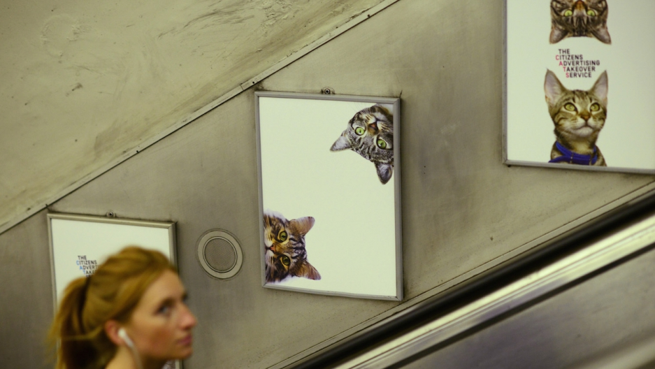 Subway cats London