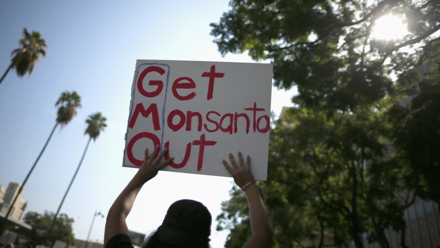 "People hold signs during one of many worldwide ""March Against Monsanto"" protests against Genetically Modified Organisms (GMOs) and agro-chemicals, in Los Angeles on October 12, 2013."