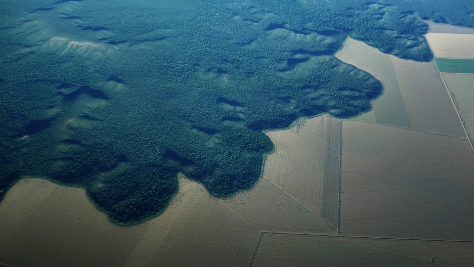 An aerial view of a section of deforested Amazon forest turned into farmland near the city of Alta Floresta, Para state in June 2013.