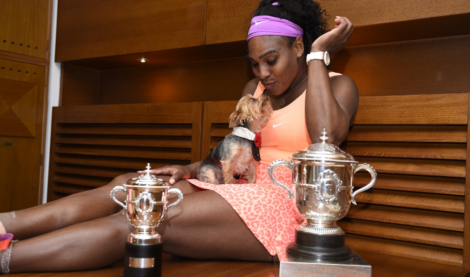 Serena Williams won the 2015 French Open, her 20th major of her career.