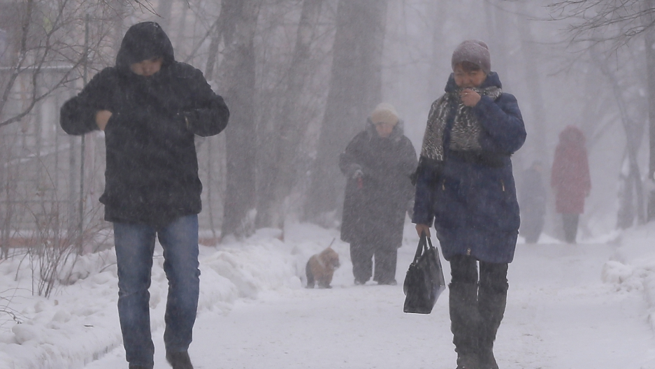 People walk in a park as it snows in Moscow, Russia, January 14, 2016.