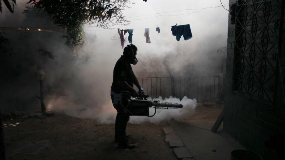 A health worker fumigates the Altos del Cerro neighbourhood as part of preventive measures against the Zika virus and other mosquito-borne diseases in Soyapango, El Salvador.