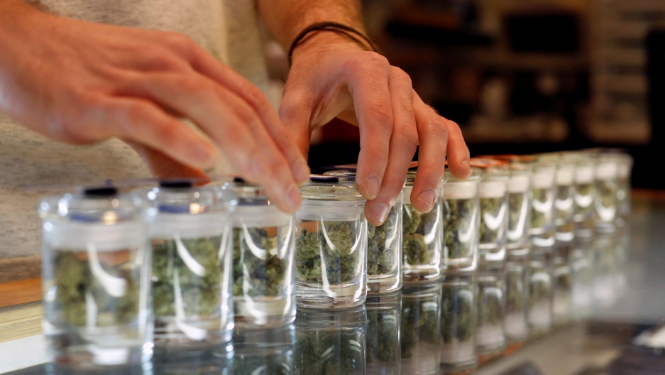A variety of medicinal marijuana buds in jars are pictured at Los Angeles Patients & Caregivers Group dispensary in West Hollywood, California U.S., October 18, 2016.
