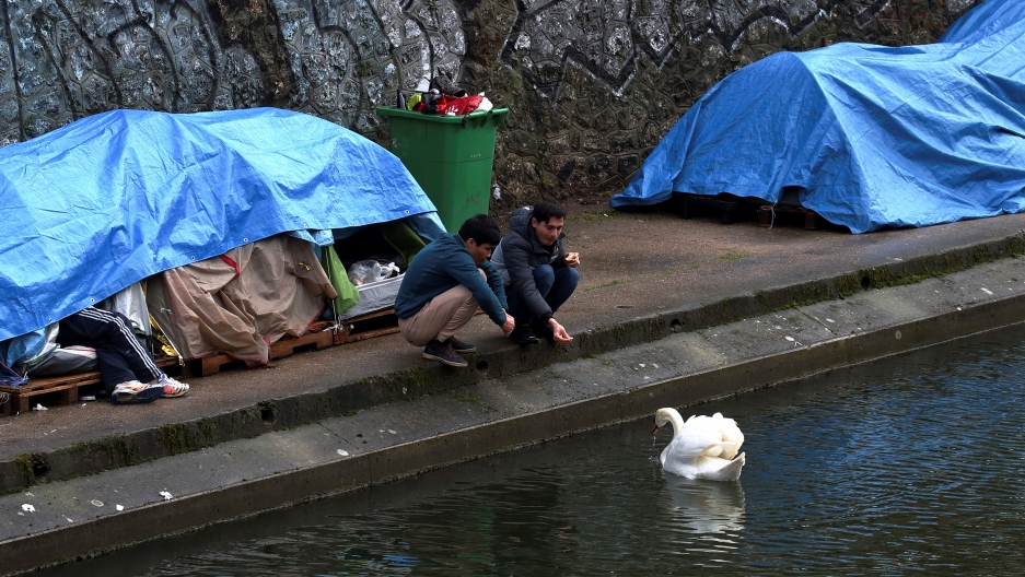 Two young men crouch by a canal feeding swans with camping tents in the background.