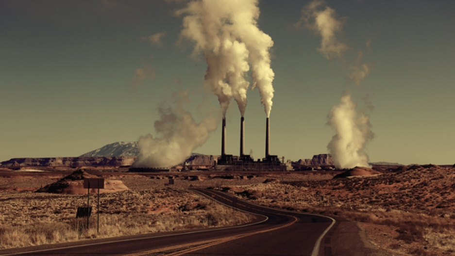 Polluting plant