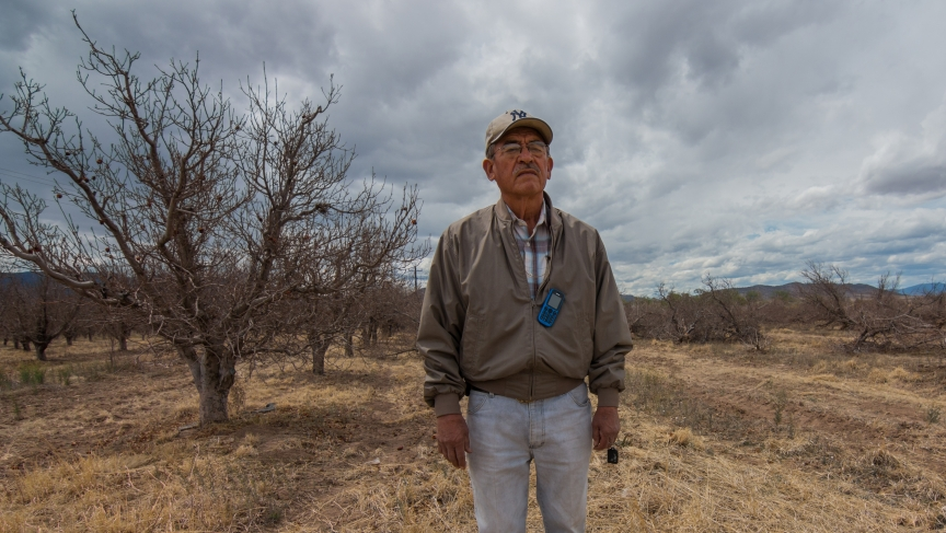 Vicente Robles in his apple orchards in Bachíniva, Chihuahua.