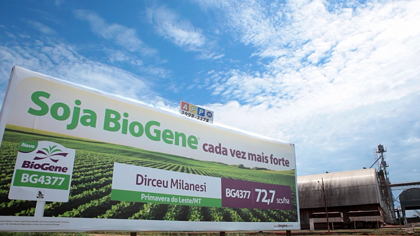 A billboard for soybeans in Mato Grosso, Brazil. The region is likely to make Brazil the world's top producer of soybeans, but the boom in production has come at the same time as a rise in deforestation.