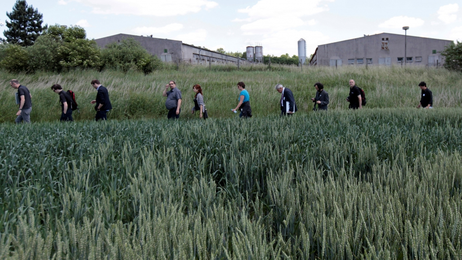Participants of the European Meeting of Antiracist Leaders walk past a pig farm