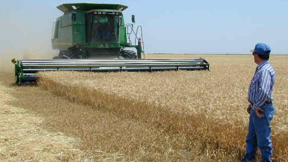 Lance Frederick in a farm field