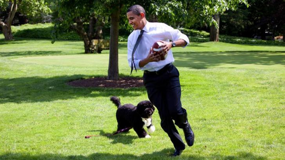 President Barack Obama runs on green grass, holding a football in his hands, as the family dog Bo chases close behind on May 12, 2009.