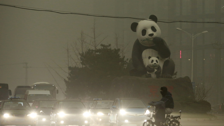 Pandas in pollution
