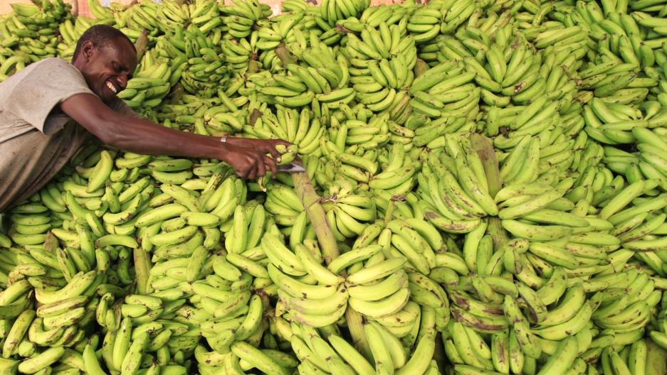 A vendor displays bananas at his stall in Somalia capital Mogadishu, July 8 2013.