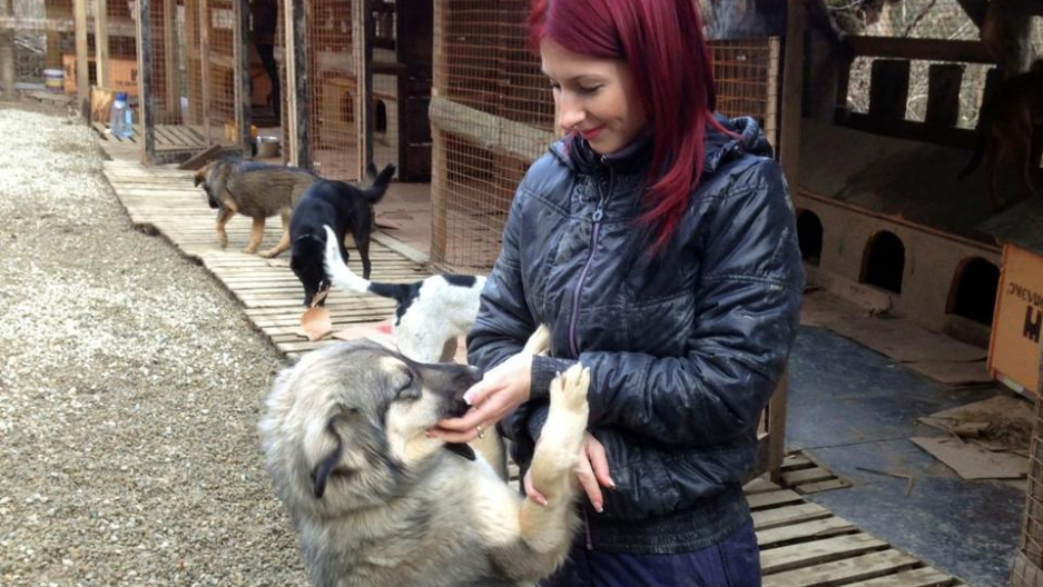 Vlada Provotorova picks up dogs off the street and takes them to her makeshift shelter on the outskirts of Sochi.